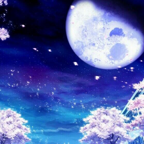 [日系]史上最唯美的月夜合集