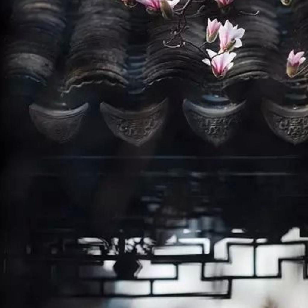 【国语】庭有枇杷树