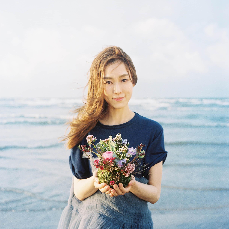 动物森林 - 范玮琪(范范)