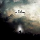 The Awakening专辑封面