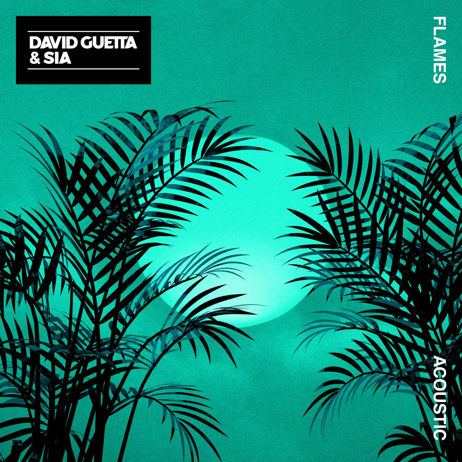 David Guetta - Flames (Acoustic) (Ft. Sia) 极致女高音