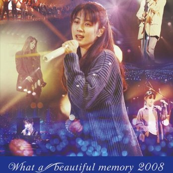 ZARD What a beautiful memory 2008